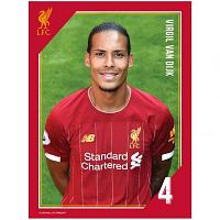 Liverpool FC Headshot Photo Van Dijk