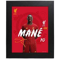 Liverpool FC Picture Mane 10 x 8