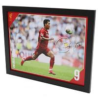 Liverpool FC Picture Firmino 16 x 12