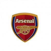 Arsenal FC Fridge Magnet - 3D