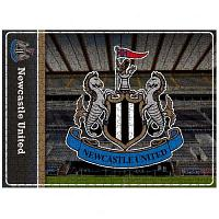 Newcastle United FC 500pc Jigsaw Puzzle