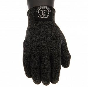Everton FC Luxury Touchscreen Gloves Youths 1